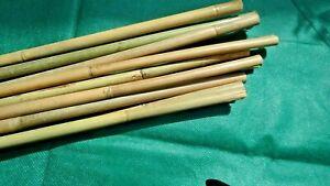 Bambus-Stäbe  Rankhilfe Rank- Stäbe für Pflanzen Top Qualität  L152 cm