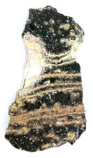 70.1 Gram Obsidian Lace Opalized Opal  Slab Cab Cabochon Gem Gemstone Rough OS5