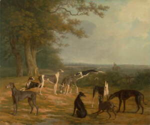 Jacques Laurent Agasse Nine Greyhounds Giclee Canvas Print Poster LARGE SIZE