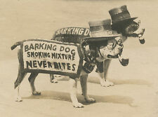 ANTIQUE BOARDWALK TOBACCO LEAF ADVERTISING AMERICAN PITBULL PIPE HAT OLD  PHOTO
