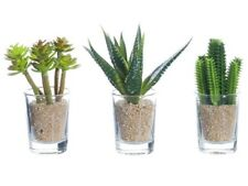 "Assorted Artificial Cacti in Glass Vase, 3.5"" to 4"", 3 Pieces."