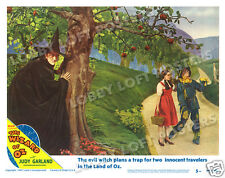 THE WIZARD OF OZ LOBBY SCENE CARD # 5 POSTER 1949-R MARGARET HAMILTON WITCH