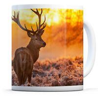 Winter Wildlife Deer  - Drinks Mug Cup Kitchen Birthday Office Fun Gift #8110