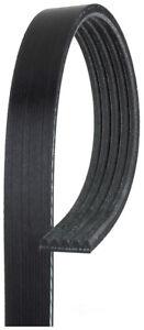 Serpentine Belt  ACDelco Professional  5K321