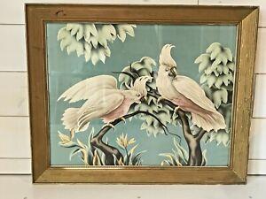 Mid Century Turner Cockatoo Print Framed Vintage Picture 33 x 27 Cockatoos