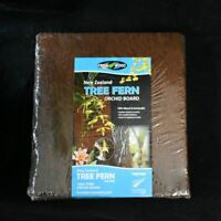 New Zealand Tree Fern Orchid Board Twin Pack