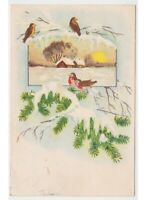 Card Christmas Vintage Years 50 Winter Snow Birds on Branch Spruce
