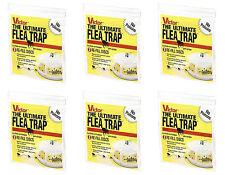 Victor M231 Ultimate High Efficiency Flea Trap Refills, 6 Packs of 3 *