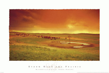 WESTERN ART PRINT - Storm Over the Prairie - David Stoecklein 36x24 Horse Poster