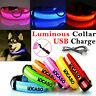 Rechargable USB LED Dog Pet Pupply Leash Lead Flashing Luminous Safety Light Up