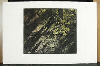 Print Towards 1970 On Paper Vellum, Shaft Sheet Of Oak Artist IN Determine?