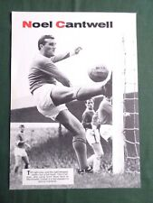NOEL CANTWELL - MAN UNITED  - 1 PAGE PICTURE-CLIPPING/CUTTING