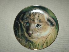 More details for princeton gallery plate lion cub 21.5 cm high signed qua