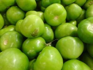 Tomatillo Verde Seeds 100 Ct Vegetable Salsa HEIRLOOM NON-GMO USA FREE SHIPPING