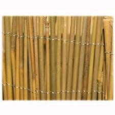 Tenda Arella Mister In Canna Di Bamboo Pulita Dimensione 100X300Cm