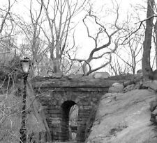 Black & White 8x10 Original Photo of Bridge in Central Park, New York City, NY