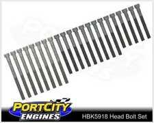 Head Bolt Set Mercedes Benz 5cyl OM617 240D 300D 300TD 3.0L Diesel HBK5918