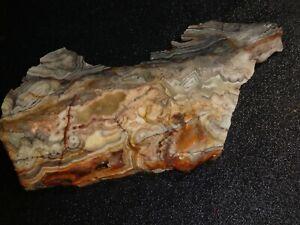 "Laguna Lace Agate slab-  6  3/4""  x  3 ""--  rough, cabbing--display"