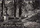 AA4170 Arezzo - Provincia - La Verna - Salita al Santuario - Cartolina postale