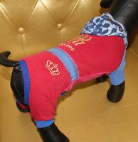 4950_Angeldog_Hundekleidung_Hundeoverall_Hund_SPIDERDOG_CHIHUAHUA_RL26_XS