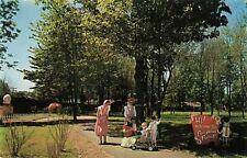 Postcard Fairyland Forest Conneaut Lake Park Pennsylvania
