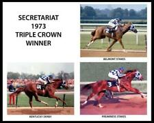 SECRETARIAT 1973 Champion Triple Crown Horse Racing 8 x 10 Photo Ron Turcotte