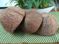 Coconut Shell Eco-friendly Ceylon Natural Free Shipping Without Fiber