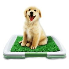 Dog Toilet Mat Indoor Restroom Training Grass Toilet Pad Loo Tray Dog Puppy