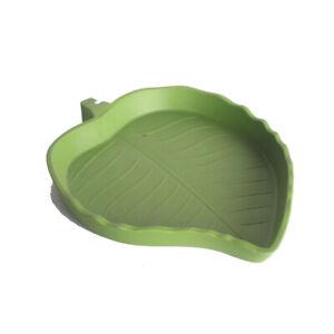 Abu I Pet Reptile Feeder Small Green Leaf shaped Dish food water bowl