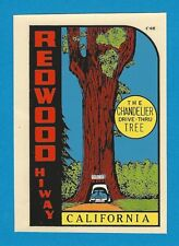 "VINTAGE ORIGINAL 1955 ""CHANDELIER DRIVE-THRU TREE"" REDWOOD HIWAY DECAL ART"
