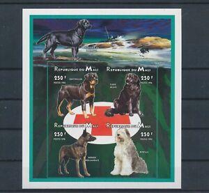 LO04314 Mali pets animals dogs imperf sheet MNH
