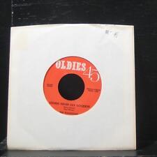 "The Flamingos - Lovers Never Say Goodbye 7"" Mint- 633681 Vinyl 45"