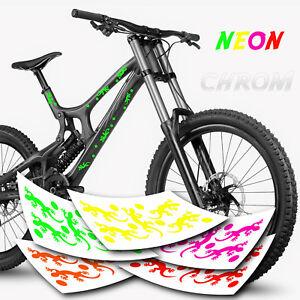 Gecko Fahrrad Aufkleber | Gecko Fahrradaufkleber | Sticker Gekko | Kreis SET
