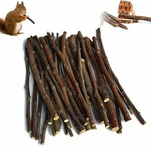 Apple Wood Chew Toy Sticks for Rabbits Hamsters Chinchilla Teeth Grinding 50g