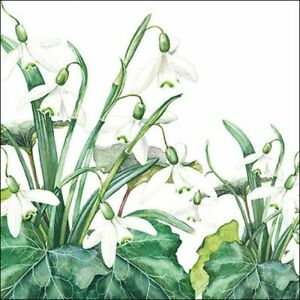Ambiente Paper Napkins, Pack of 20, 3-ply Lunch Size Snowdrops