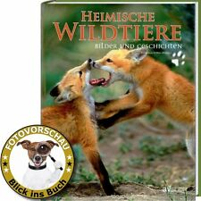 Heimische Wildtiere von Daniela Lipka (2005, Gebunden)