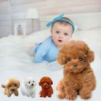Teddy Dog Lucky Handmade Realistic Figure Toy Dog Plush Stuffed Animal
