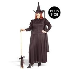 Witches & Wizards - Classic Witch Plus Size Adult Costume