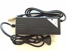 ELECTRIC SKATEBOARD CHARGER ( Lead Acid Battery)