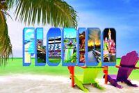 "Florida Postcards - 250 Bulk Order - 4"" x 6"" - Souvenirs for Tourists"