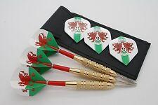 23g Galles set dardi - Voli del dardo Standard, steli, custodia