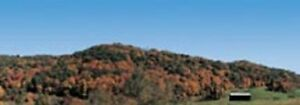 "Realistic Backgrounds HO Scale 704-17: MOUNTAINS IN AUTUMN SCENE 'B'  13"" X 38"""