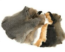 Rabbit Pelt Hide Fur for Crafts Decorate Natural Colors - 5 Pack Assorted Colors