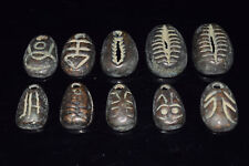 Collect 10pc Chinese Bronze Turtle shell shape Coin Old Dynasty Antique Currency