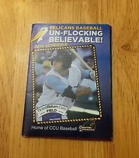 2014 MYRTLE BEACH PELICANS SCHEDULE CUBS A AFFILIATE BASEBALL POCKET SCHEDULE