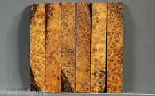 p4262  -        GOLDEN AMBOYNA  BURL - Pen Blanks - Kiln Dried
