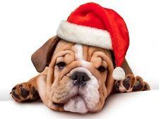 Sombrero de navidad para perros medianos grandes color rojo perro perrito