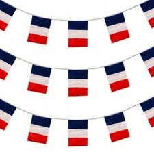 TRICOLORE FRANCE FRENCH PVC  BUNTING 33FT FLAG DECORATION 20 FLAGS 10M PARTY