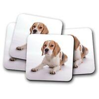 4 Set - Beautiful Beagle Dog Coaster - Puppy Hound Cute Pet Animals Gift #15524
