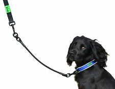 Shock absorbing Bungee Lead Extension- Leash Extender for Medium & Small Dogs